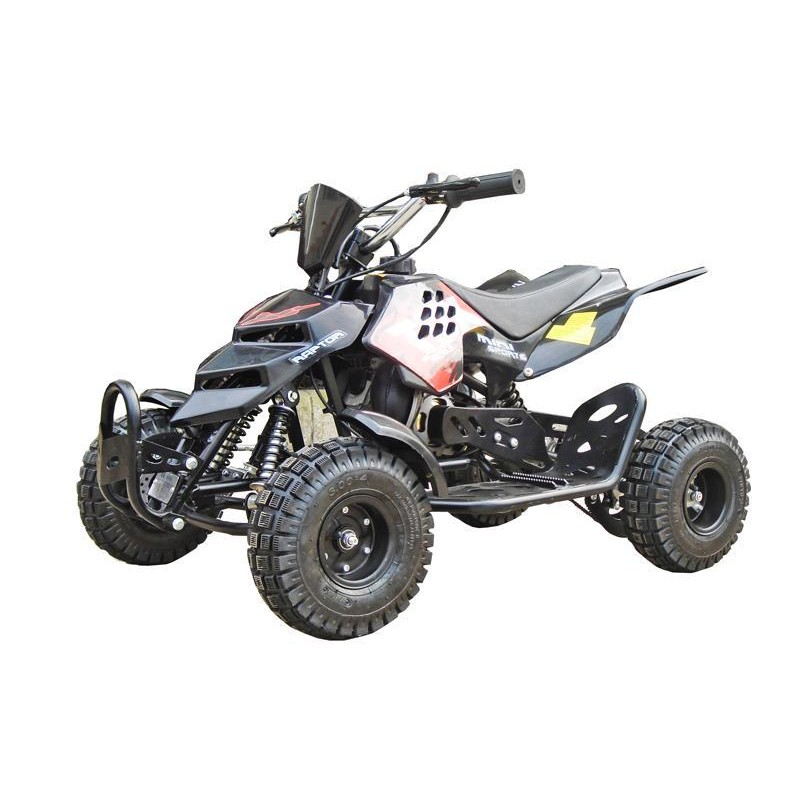 49cc Mini Quad REPTI
