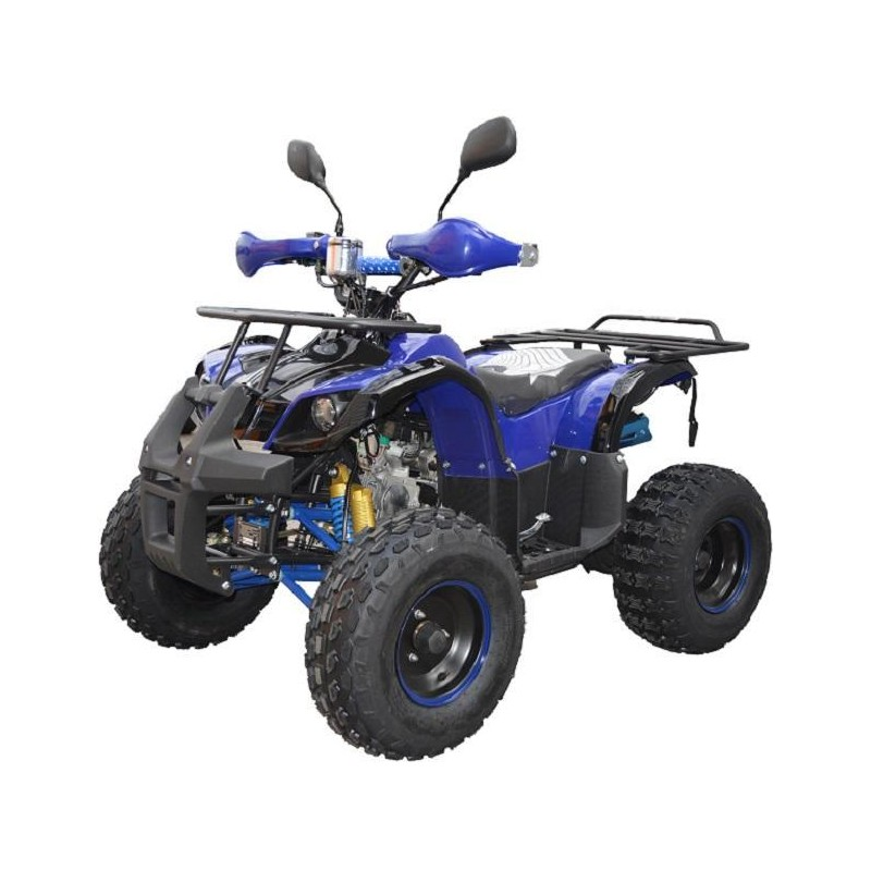 125ccm RENEGADE / 8'kolesa / maksimalna oprema